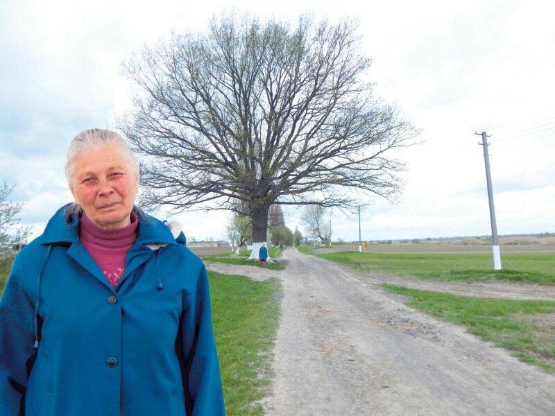 Євгенія Ковальчук серед тих, хто найбільше знає про минуле села. Історію про особливе дерево передає з особливою втіхою.