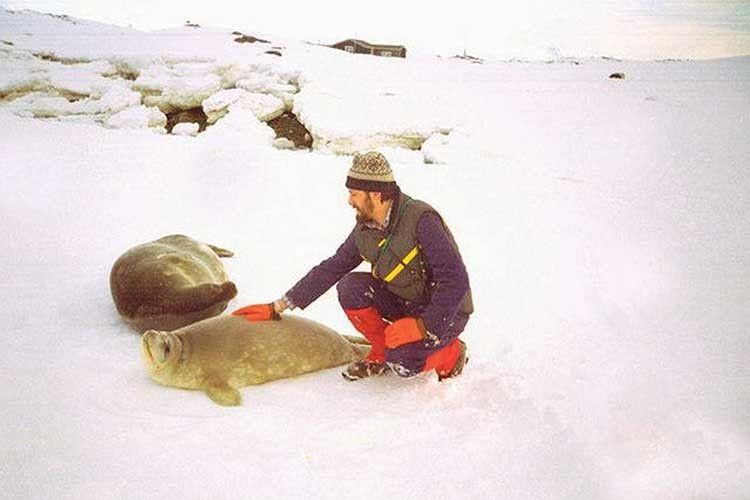 Про різноманітний тваринний світ Антарктики чоловік може розповідати годинами.