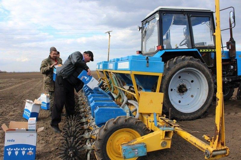 Микола Романюк засипає насіння у бункери.