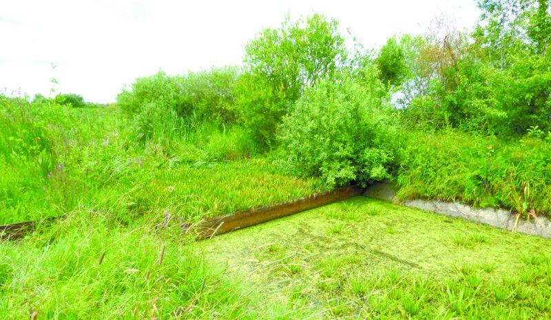Ця нехитра споруда тримає воду в озері Люцимир.