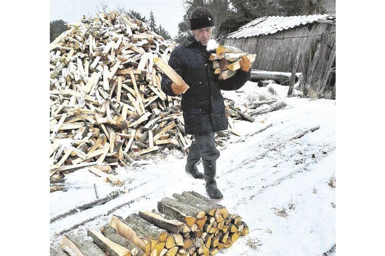 Анатолій Завертайло дров на зиму вдосталь заготовив.