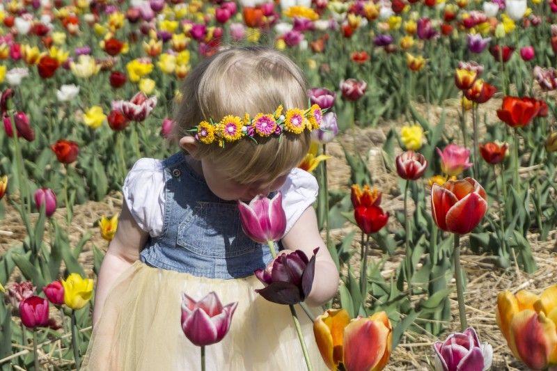 Лучанка Аня, якій лише рік  і 4 місяці, до краси звикає змалку.