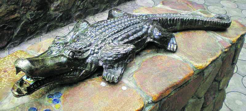 Життя цієї рептилії було вкрай коротким,  але напрочуд яскравим!