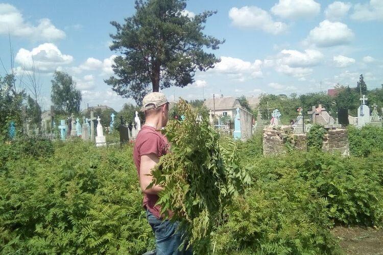 Могили почистили від зарослів трави та чагарників.