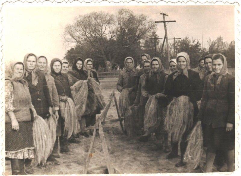 Тріпання льону в Боровичах (1970-80-ті рр., фото з домашнього архіву Домінікії Лучко)
